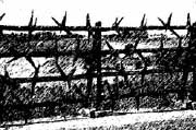 Barbed wire fencemau-cover