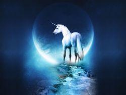 Real_Unicorn_Fantasy_Space
