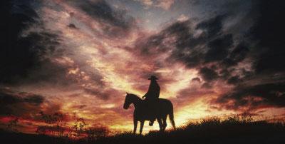 Realcowboy